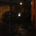 tree down on hicks by BQE